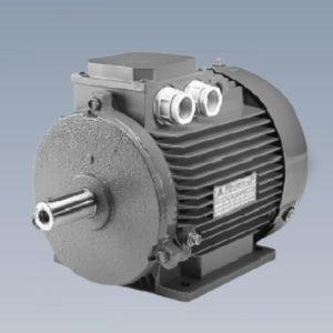 Электродвигатели STM
